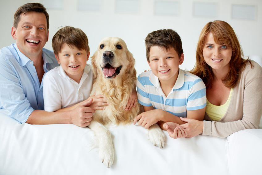 How Your Dog Can Impact Your Homeowner's Insurance